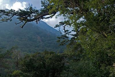 View of a nearby mountain from Shiratani Unsuikyo in Yakushima, Japan