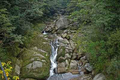 Water flowing in a rock-filled creek in Shiratani Unsuikyo, Japan