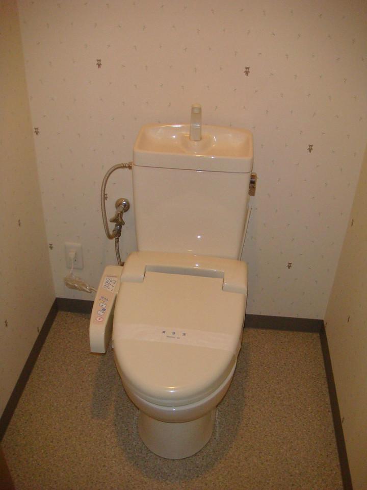 Futuristic Toilet in Room at Yakushima, Japan