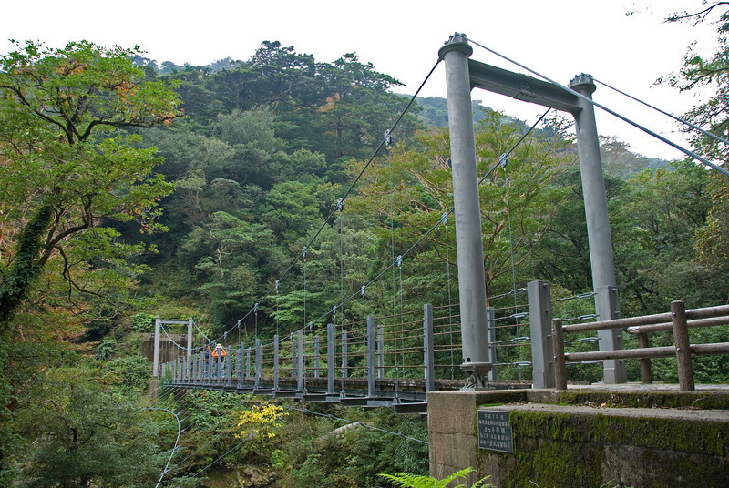 Steel bridge inside Shiratani Unsuikyo in Yakushima, Japan