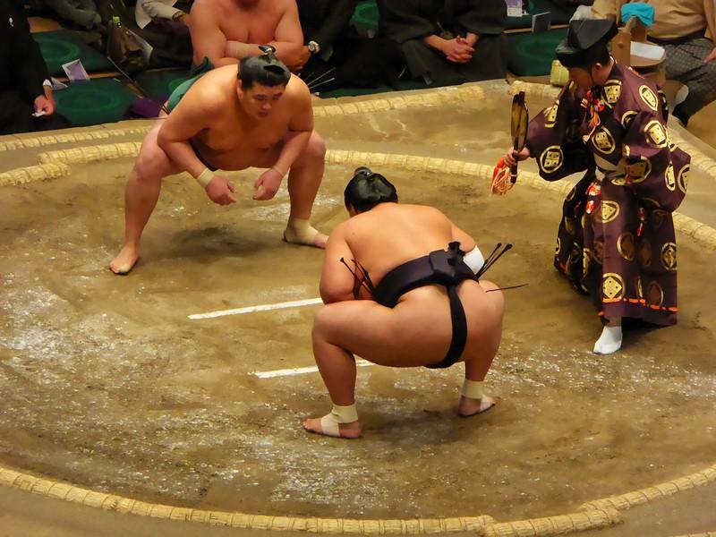 Sumo Wresting in Ryogoku