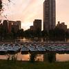 Ueno Park Sunset