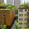 Tokyo Roof Gardens