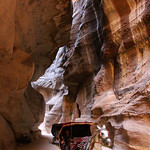 Horse Carriage on the Way to Petra, Jordan – Photo