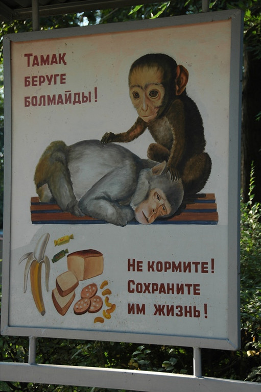 Quirky Monkey Sign Outside Almaty Zoo, Kazakhstan