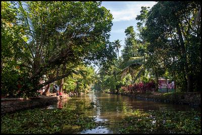 On the backwaters around Kumarakom
