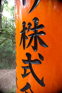 Torii Gate, Fushimi Inari