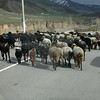 Uz 1953 onderweg van Osh naar Sary-Tash