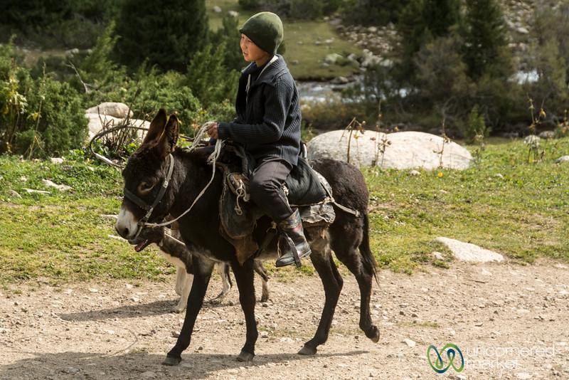 Kyrgyz Boy and Donkey - Jyrgalan trek, Kyrgyzstan