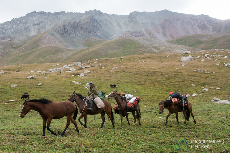 Horses Carry Our Tents and Bags - Jyrgalan Trek, Kyrgyzstan