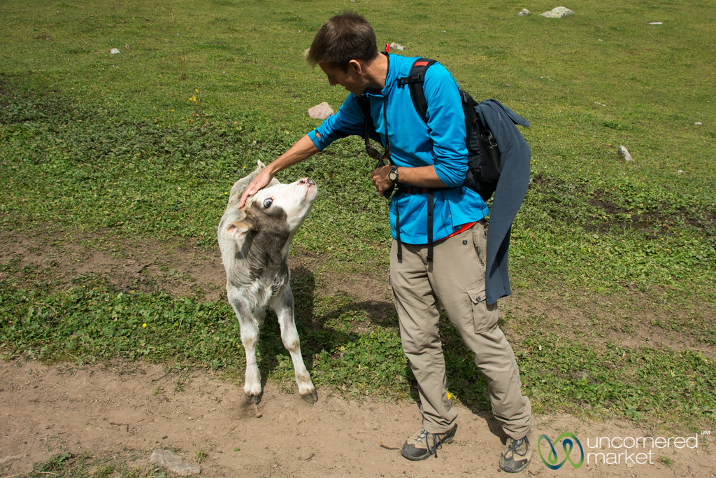 Dan Makes a New Friend - Jyrgalan Trek, Kyrgyzstan