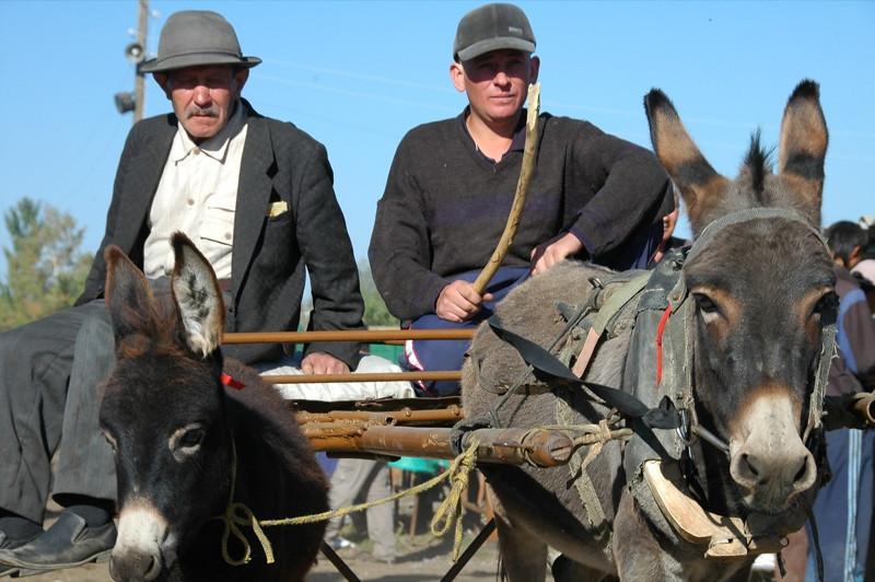 Karakol Animal Market, Father and Son - Kyrgyzstan