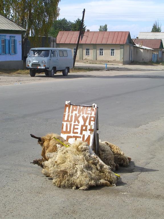 Sheep Skins for Sale - Karakol, Kyrgyzstan