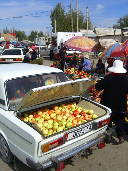 Apples in Lada Trunk  - Karakol, Kyrgyzstan