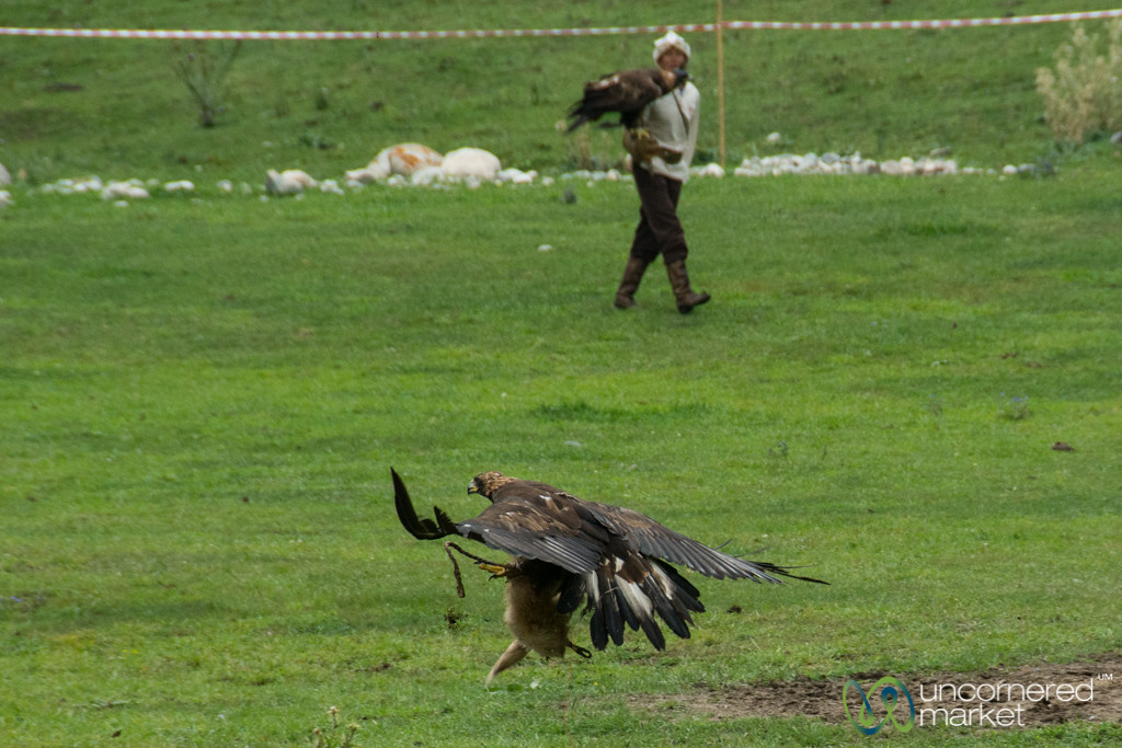 Golden Eagle Hunting Competition - World Nomad Games, Kyrgyzstan