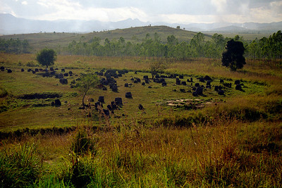 Phonsavan...to see the plain of jars...