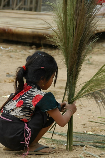 Girl Drying Bamboo Flower Reeds - Nong Khiaw, Laos