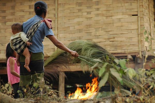 Drying Bamboo Reeds - Nong Khiaw, Laos