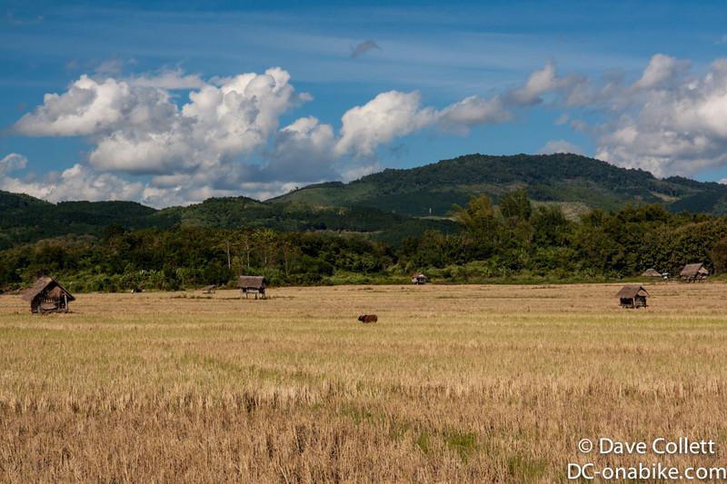 Huts in fields