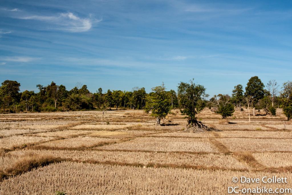 Lao Countryside
