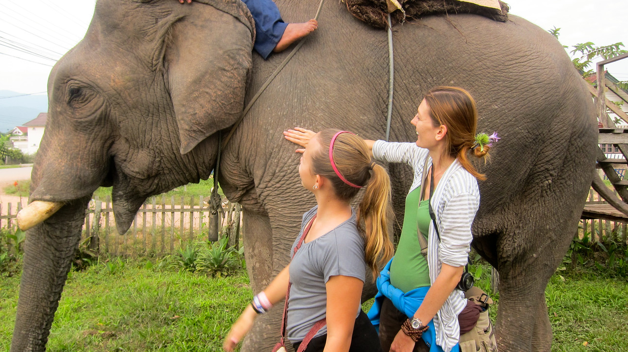 Petting an elephant in Laos.