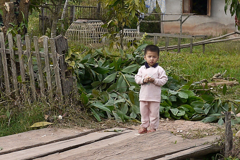 This little boy was dazzled by the falang riding by on an elephant in Hongsa, Laos.