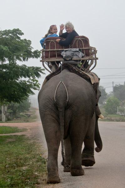 Rural Laos elephant trek.