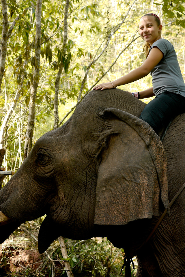 Ana spends a few minutes riding on the elephant's neck outside of Hongsa, Laos before deciding she'd rather walk and watch him wander around.