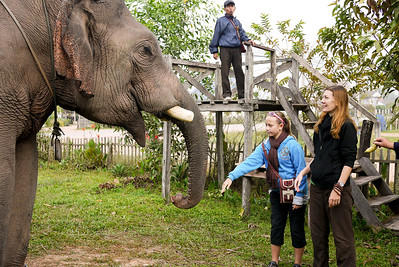 Ana tests the waters with the elephant and makes a new friend in Hongsa, Laos.
