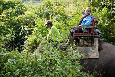 Elephant trekking in Laos.