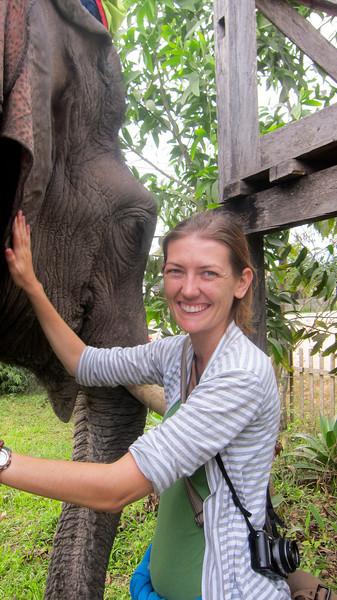 I enjoy meeting and greeting the elephant.
