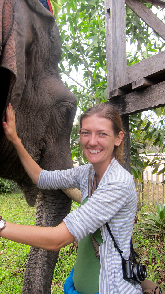 I enjoy meeting and greeting the elephant.
