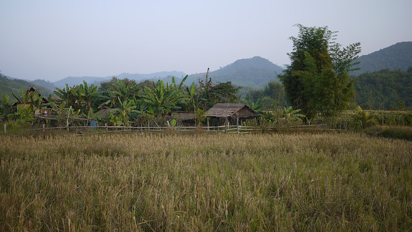 Rice paddies and thatched houses outside in the rural parts outside of Hongsa, Laos.