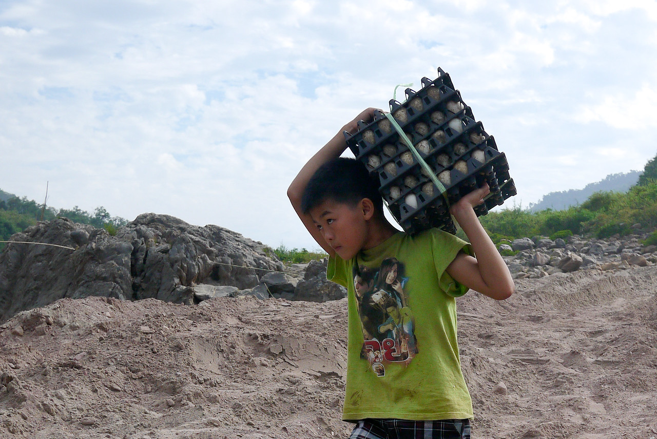 A young boy in Tha Suang, Laos loading crates of eggs onto the slow boat headed toward Luang Prabang, Laos.
