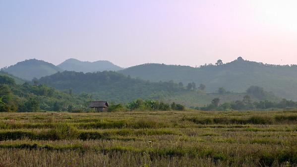 Green rice paddies in rural Loas, just outside of Hongsa.