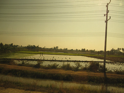 Countryside on the bus ride