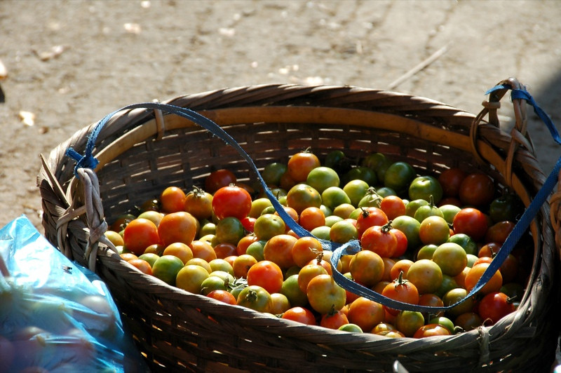 Basket of Tomatoes - Luang Prabang, Laos