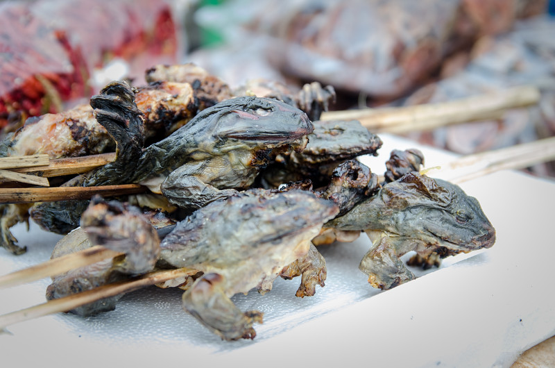 Roasted frog on a stick! So tempting!