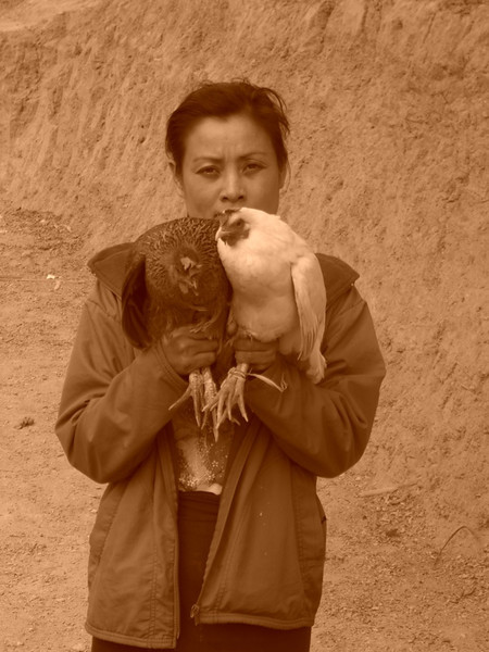 Woman with Chickens - Luang Prabang, Laos