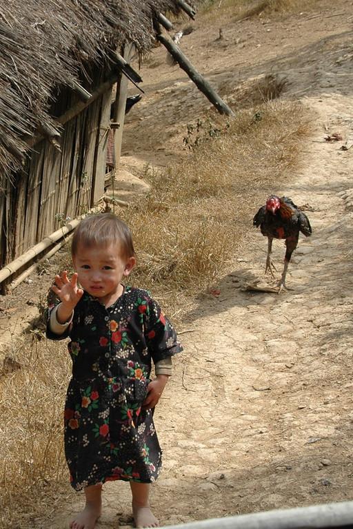 Hmong Child in Village - Luang Prabang, Laos