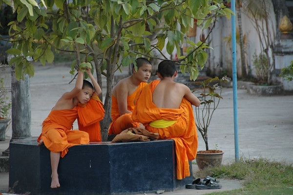 Novice Monks - Luang Prabang, Laos