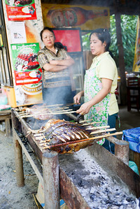 Fish on a grill near the Kuang Si Waterfalls in Luang Prabang, Laos