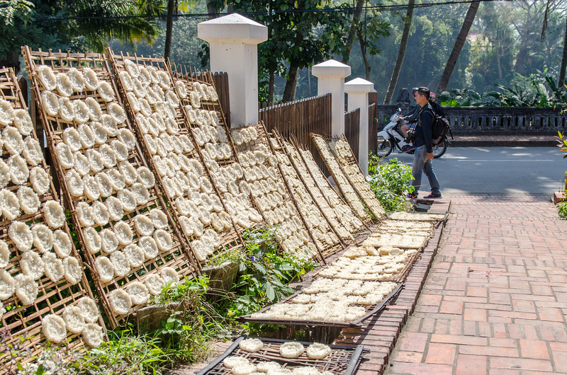 Lao style rice cakes drying in the sun.