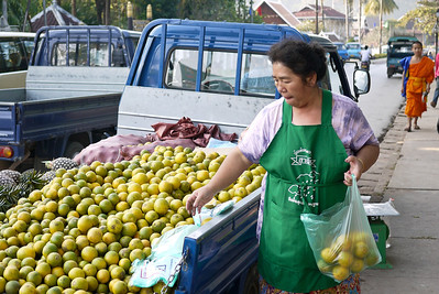 Fruit and produce are hauled in from all over the nearby countryside in Luang Prabang, Laos