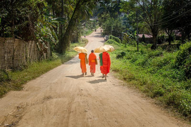 Buddhist monks on the street, Luang Prabang.