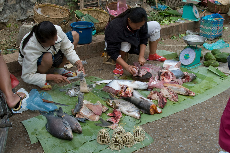 Vendors filleting fish on the side road of market in Luang Prabang, Laos
