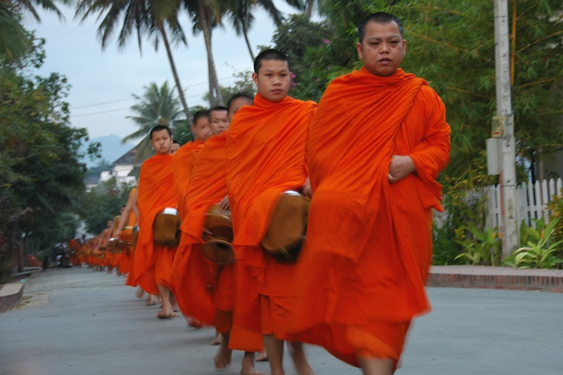 Line of Monks - Luang Prabang, Laos