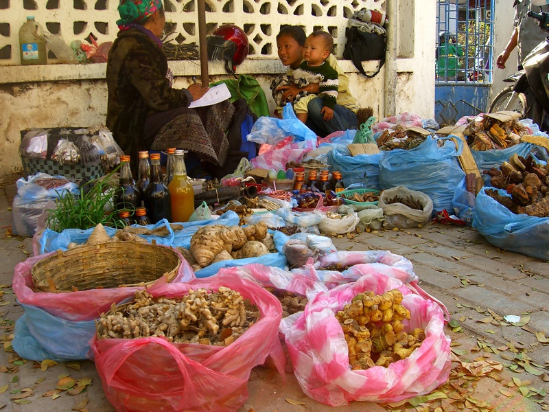 Natural Medicine Healers - Vientiane, Laos