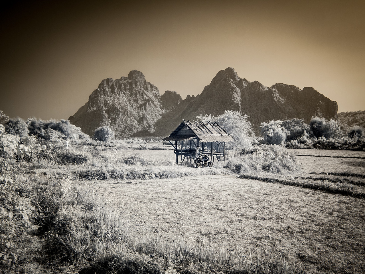 An infrared shot of a hut used by field workers to rest during the day.