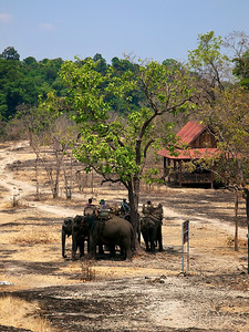 Elephant riding in Xe San Conservation Reserve (Foto: Geir)